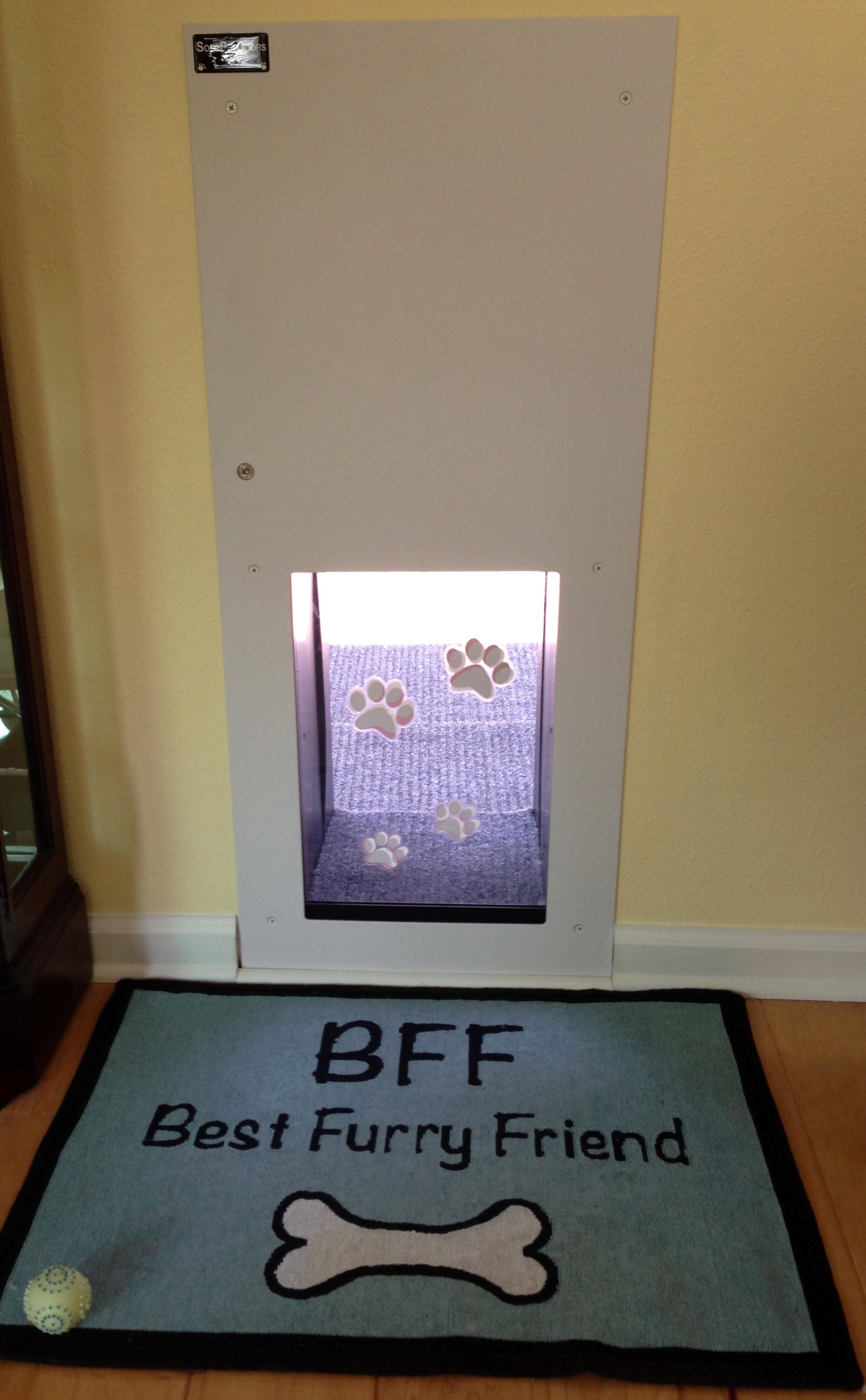 Doggy Door Pictures Kitty Pictures Solo Pet Doors